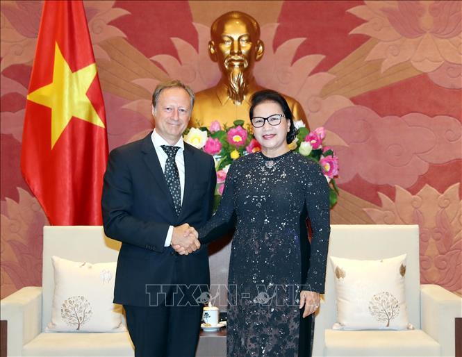 Chủ tịch Quốc hội Nguyễn Thị Kim Ngân tiếp Đại sứ, Trưởng phái đoàn EU tại Việt Nam, ông Bruno Angetlet. Ảnh: TTXVN